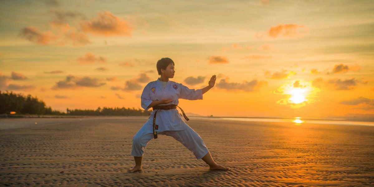 shotokan karate techniques list